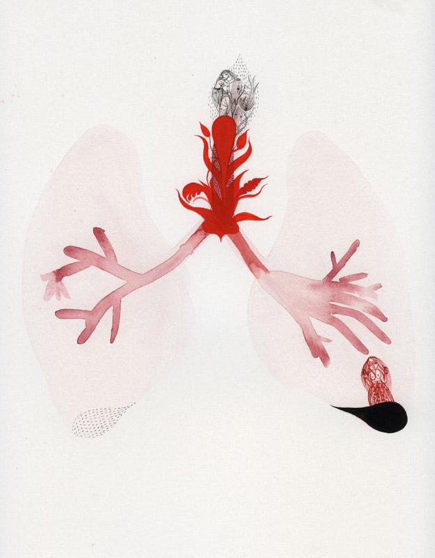 Galerux Digestive System Diagram Quiz