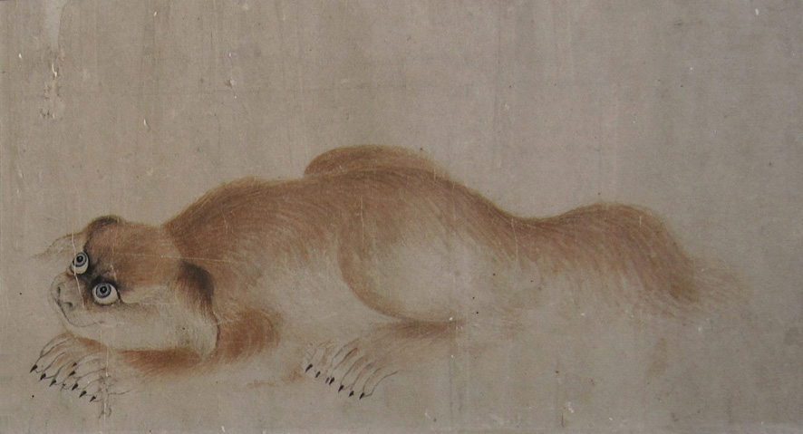 a fine painting of a crouching gold pekingese dog on soo